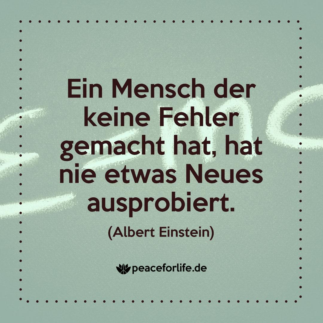 Ein Mensch der keine Fehler gemacht hat, hat nie etwas Neues ausprobiert. - Albert Einstein