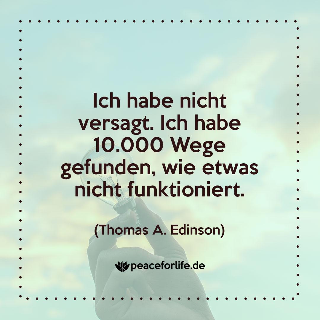 Ich habe nicht versagt. Ich habe 10.000 Wege gefunden, wie etwas nicht funktioniert. - Thomas A. Edinson