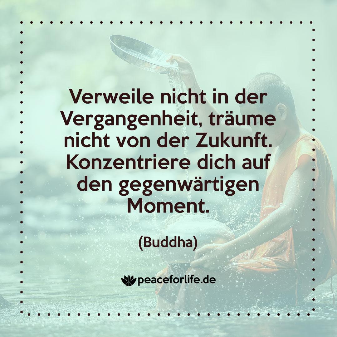 Verweile nicht in der Vergangenheit, träume nicht von der Zukunft. Konzentriere dich auf den gegenwärtigen Moment. - Buddha